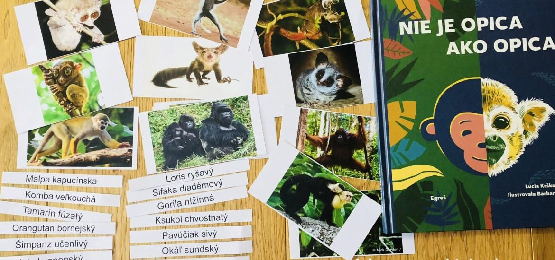 Nie je opica ako opica