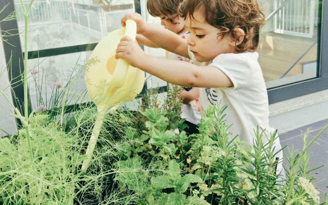 Montessori muito mais que uma pedagogia