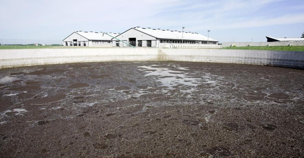 Another court rules against large-scale livestock farms