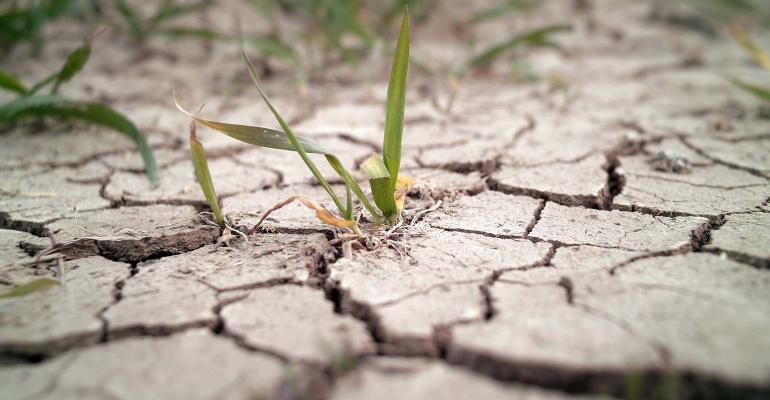 Can government policy 'fix' weather extremes?