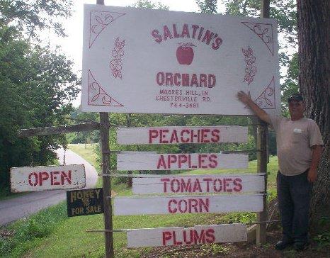 Salatin's Orchard