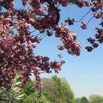 abenteuermonat-blog-adventure