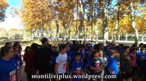 montiliviplus institut montilivi save the children 2014 01