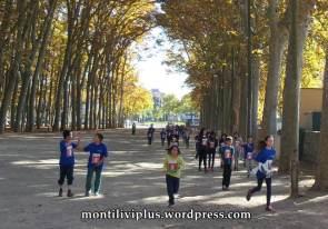 montiliviplus institut montilivi save the children 2014 11