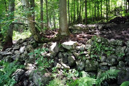Vestiges du moulin: fondations