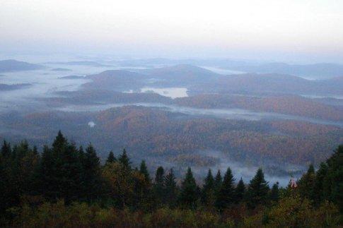 Le Mont Kaikoop menacé par les coupes forestières, La Presse