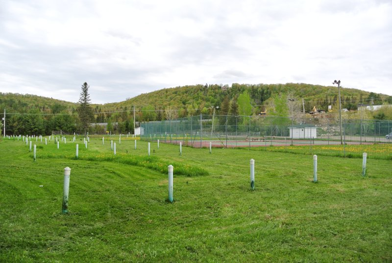Le Parc Municipal: les puits d'aération