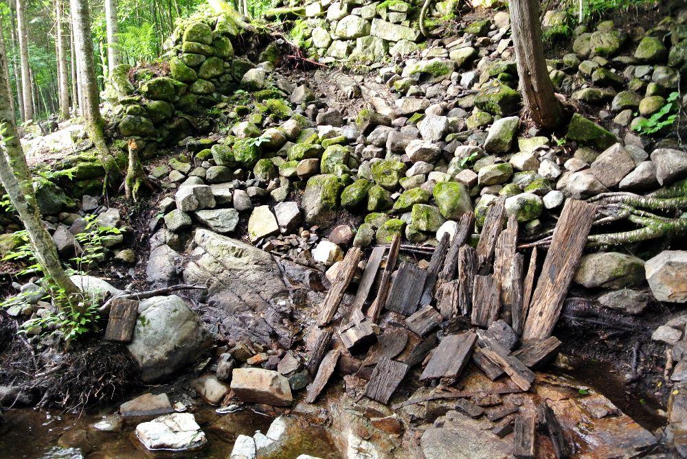 Moulins: fouilles 2019