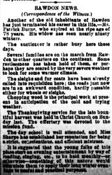 Daily Witness 15 novembre 1884