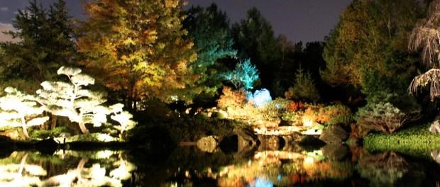 Japanese Gardens. Photo by Annie Shreeve