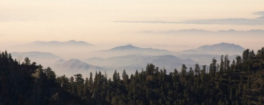 View above the clouds with scattered peaks in the background and a forested ridgeline in the foreground