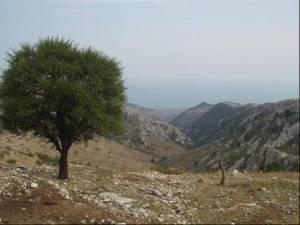 Le Monte Gargano dans les Pouilles Italie