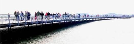 Le pont-passerelle