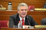 Bacchetta Enrique Senador
