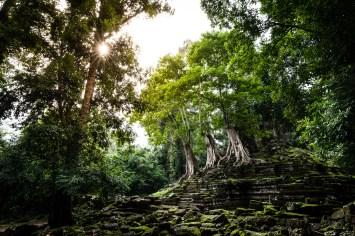 Saison des pluies Angkor
