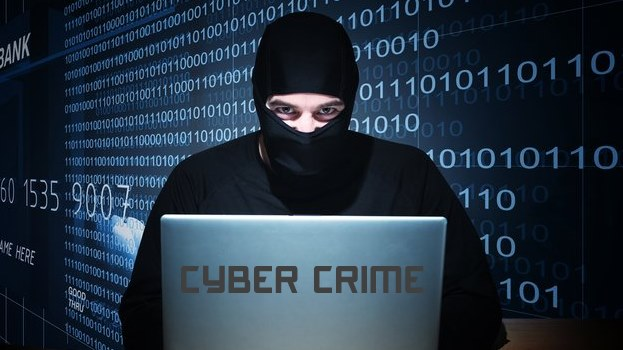 Strengths and weaknesses of Cybercrimes Bill