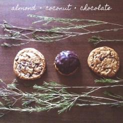 almondy coconuty chocolatey dreams