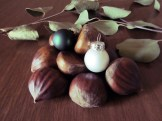 chestnuts and bulbs