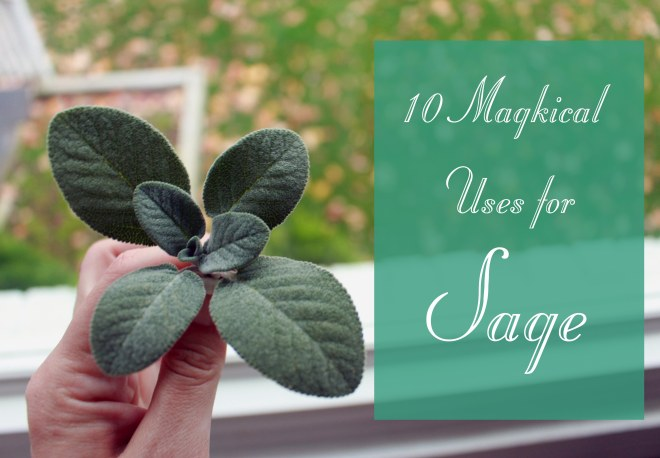 10 magical uses for sage