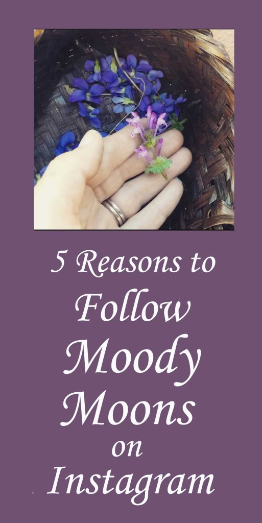 Follow Moody Moons on Instagram
