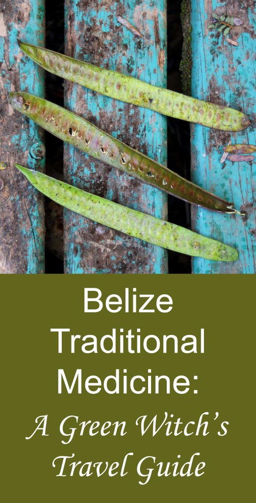A guide to exploring Belizian traditional medicine on your trip to the Yucatan peninsula.