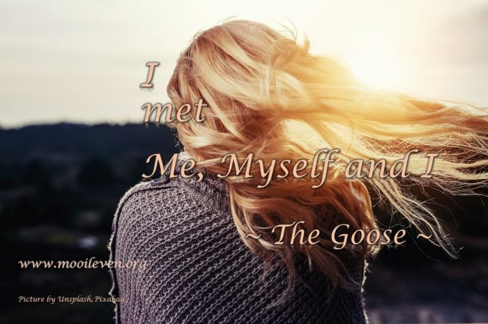 I met me, myself and I