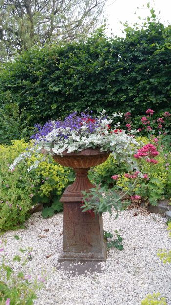 About a goosy garden: flower pot