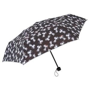 ジュエティとスヌーピーコラボの傘が付いた本
