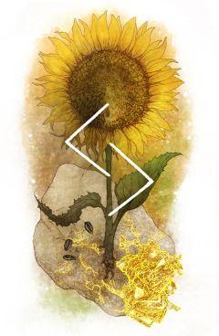 Руна Йера. Значение, активация, проживание, медитация 2
