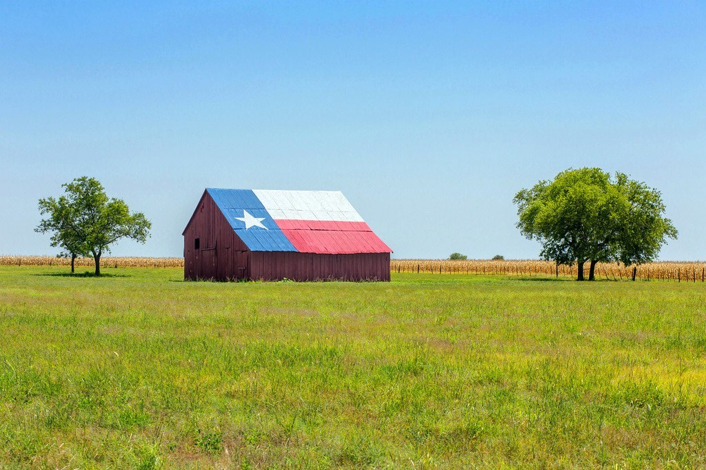 A barn in the middle of a grassy field with its slant roof painted with the Texas Flag.
