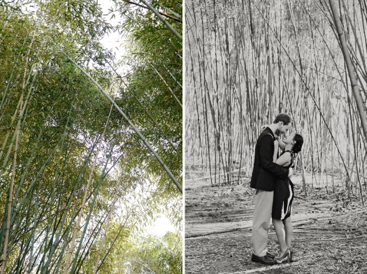 9 Birmingham Al bamboo forest engagement