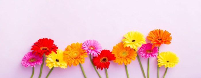 6-Desktop-FloralFooter