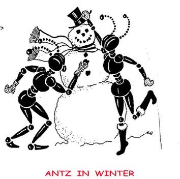 Illustration by Elizabeth English
