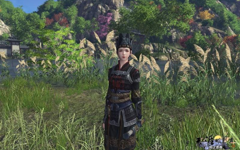 les identité du jianghu - armor escort (2)