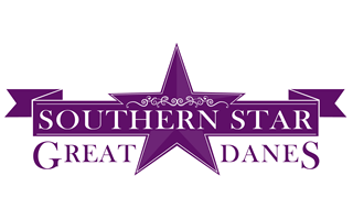 Southern Star Great Danes