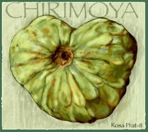 Luna de Cosecha. Chirimoya de Rosa Prat.