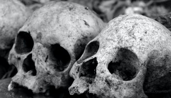 black and white bones skulls death