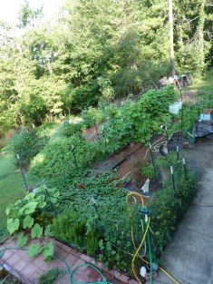 The Kitchen Garden and Hugel Section from above.