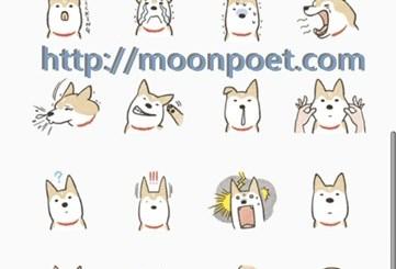 line免費貼圖區下載第二波 – Shiba Inu (可愛柴犬)