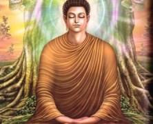 Manifestations : Buddhas, Bodhisattvas & Gods