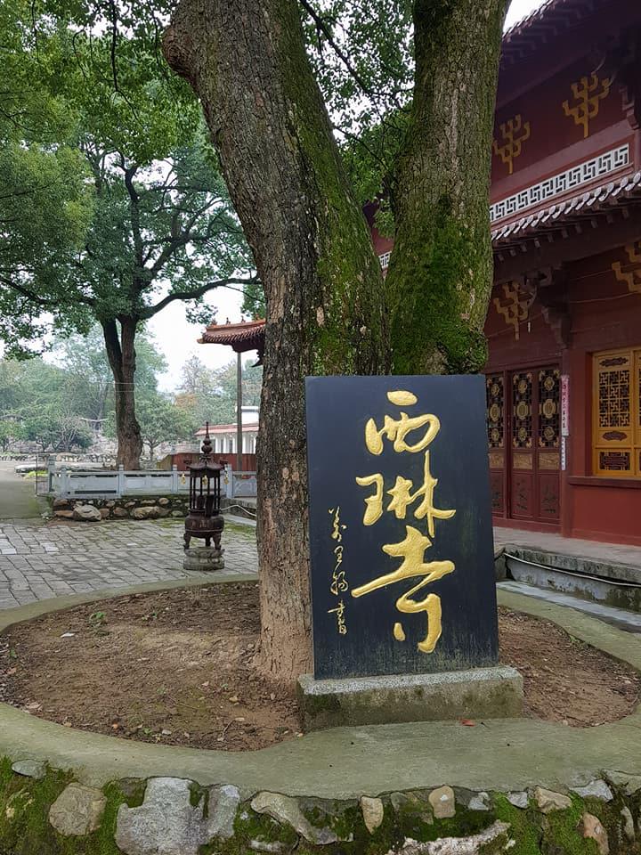 (3) Donglinsi Pilgrimage & Retreat
