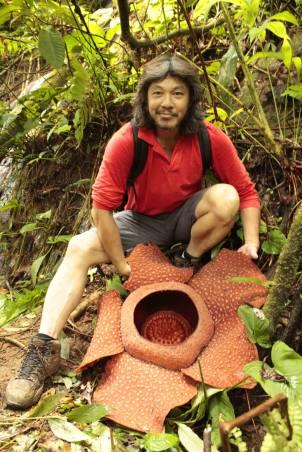 Rafflesia Trek