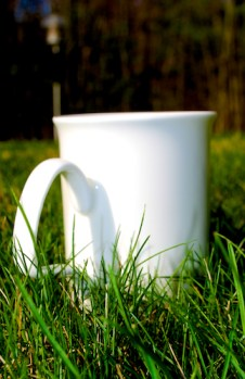 TeaMug1_Grass