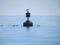boating dw camera june (43)