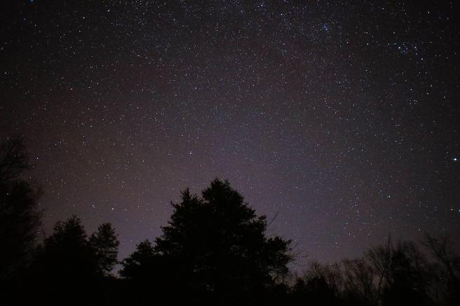 Moonshine in a Teacup| Stargaze