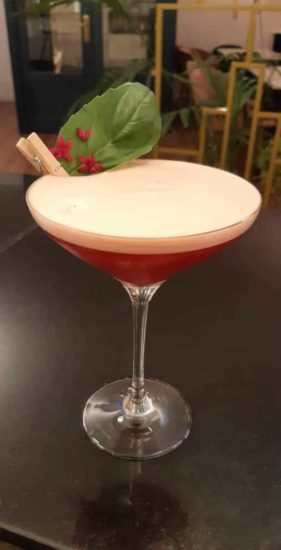aperol sour with egg white