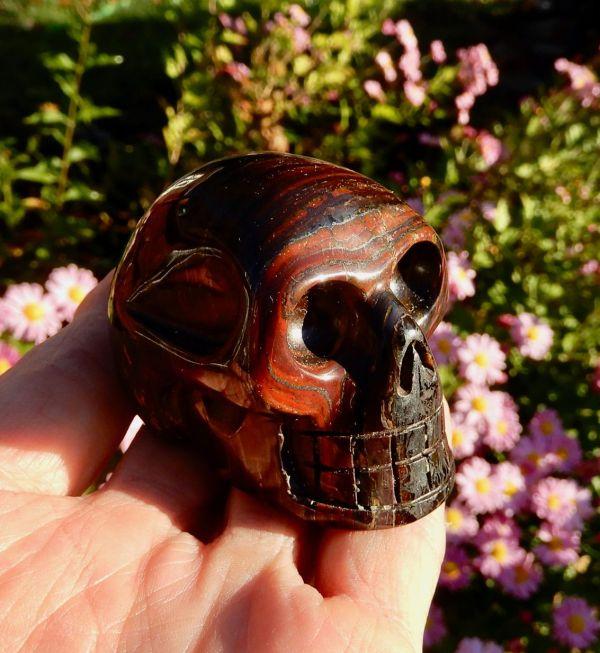 Tiger Iron Skull2