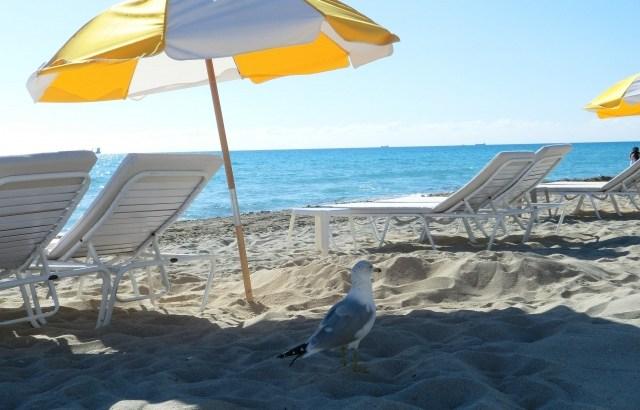 ビーチパラソルの上手な立て方!海水浴で砂浜に立てよう!風対策も!
