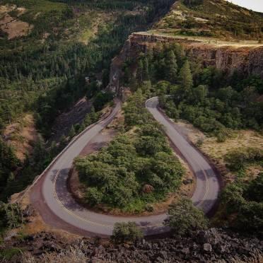 black concrete road near green trees