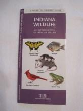 IN Wildlife